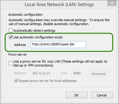 Enable, disable automatic proxy caching in internet explorer.
